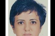 Wessal Qafsaoui, D.P.